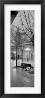 Framed Oviedo Cathedral y Bancs