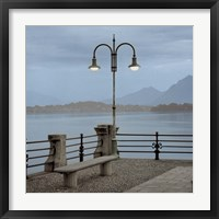 Lake Vista V Framed Print