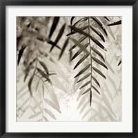 Framed Florison 56