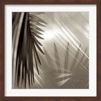 Framed Florison 55
