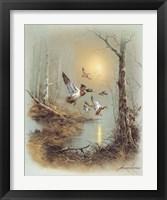 Framed Ducks A