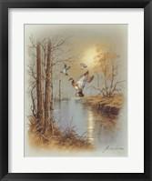 Framed Ducks B