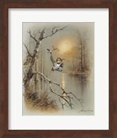 Framed Ducks C