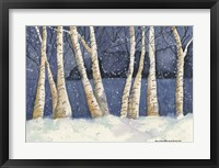 Framed Birch, Snowy Night