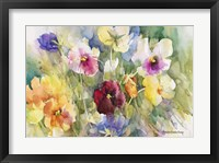 Framed Pansies Posing