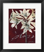 Framed Cabernet Blossoms II