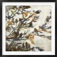 Framed Flock Together