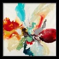 Framed Color Expression