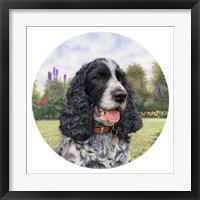 Framed Jasper