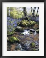 Framed Shallow Brook