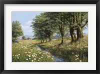 Framed Beeches And Daisies