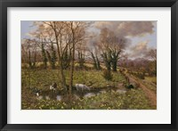 Framed Cattle And Daffodils