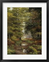 Framed Woodland In The Fall