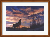 Framed Sky Wolf