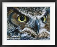 Framed Dark Owl