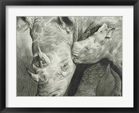 Framed Rhino Love