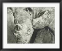 Framed Rhino Love