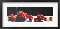 Framed 2008 Best of Show Radiant Red