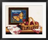 Framed Mariposa