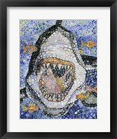Framed Great White