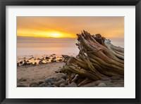 Framed Driftwood Sunset
