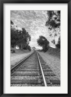 Framed On The Right Track