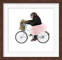 Framed Monkeys Riding Bikes #1