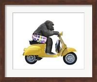 Framed Monkeys Riding Bikes #4