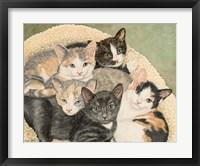 Framed Gracie's Kittens