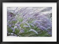 Framed Purple Wild Grass II