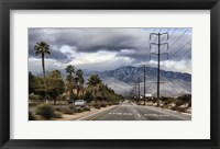 Framed Palm Spring