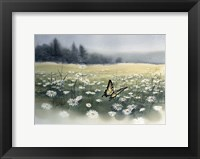 Framed Daisy Field