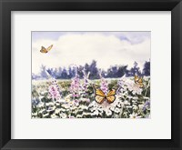 Framed Wild Flowers & Butterflies