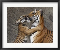 Framed Kiss For Mom