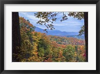 Framed Window To The Smoky Mountains