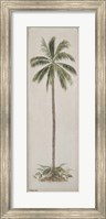 Framed Single Palm tree