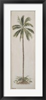 Framed Single Palm tree