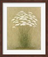 Framed Floral D