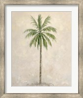 Framed Palm Tree 1