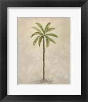 Framed Palm Tree 2