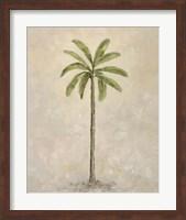 Framed Palm Tree 2