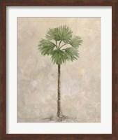 Framed Palm Tree 3