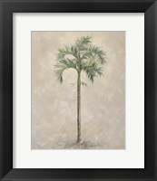 Framed Palm Tree 4