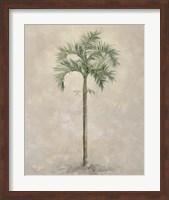 Framed Palm Tree 4
