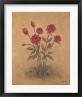 Bunch of Red Roses 2 Framed Print