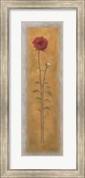 Framed Tall Red Poppy W/Bud Right
