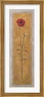 Framed Tall Red Poppy W/Bud Right