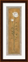 Framed Tall White Rose