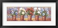 Row Of Flower Pots - A Framed Print