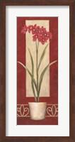 Framed Red Flower In Pot